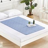 固態冷凝冰涼單人床墊水藍款 60X90cm $599