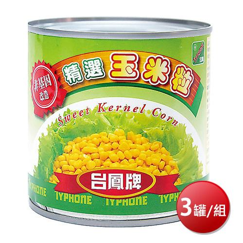 《台鳳》非基因改造玉米粒(340gx3罐/組)