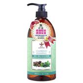 《蜂王》洗髮露-950ml/瓶(無患子草本)