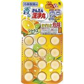 《小林製藥》排水管消臭洗淨丸-12錠入/包(柑橘香)